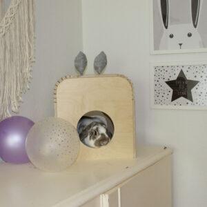 kleines Haus mit Kaninchenohren