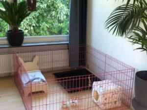 Kaninchenkäfig rosa mit Kaninchenbett und Refugium