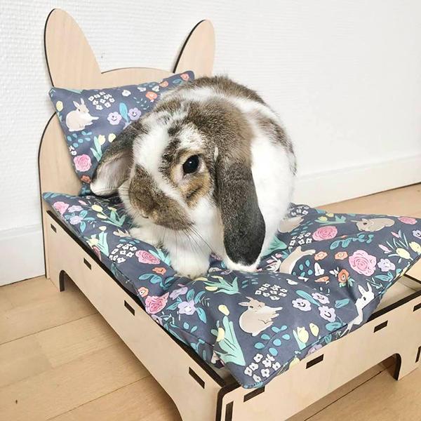Kaninchen im Bett blau