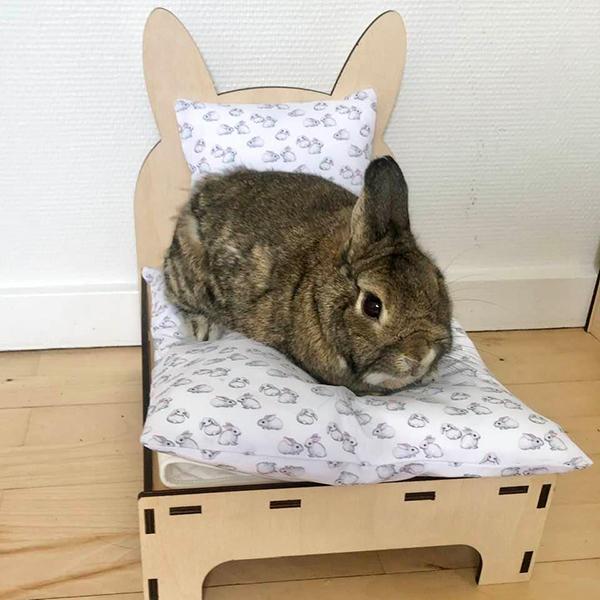Kaninchen im Bett mit weißen Kaninchen