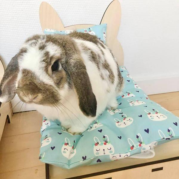 Kaninchen im Bett mit hellblauen Indianern