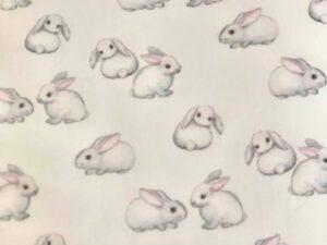 in der Nähe von weißen Kaninchen